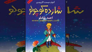 Photo of دانلود کتاب شازده کوچولو + کتاب صوتی با صدای احمد شاملو