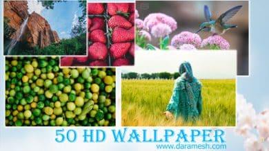 Photo of دانلود رایگان مجموعه والپیپرهای با کیفیت 50 Beautiful HD Wallpapers